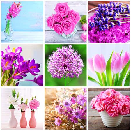 sch�ne blumen: Beautiful flowers collage Lizenzfreie Bilder
