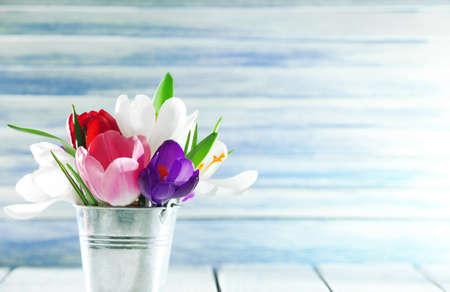 jardines con flores: Flores de primavera hermosas en cubo de metal sobre fondo de color