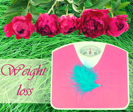 losing control: Feather on scales on green grass.  Losing weight for the summer