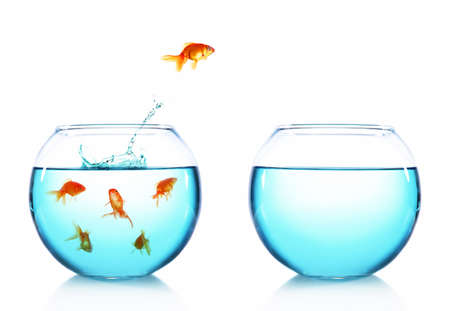 Goldfish jumping from glass aquarium, isolated on white