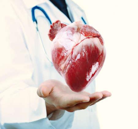 ataque al corazón: Concepto médico. Médico hombre con verdadero corazón en las manos.