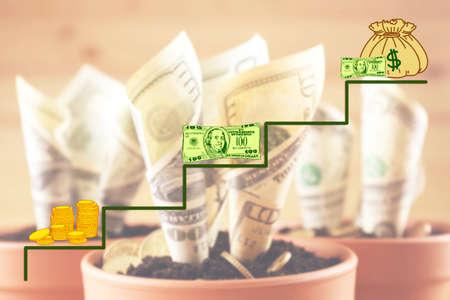 flowerpots: Money concept. Growing money in flowerpots