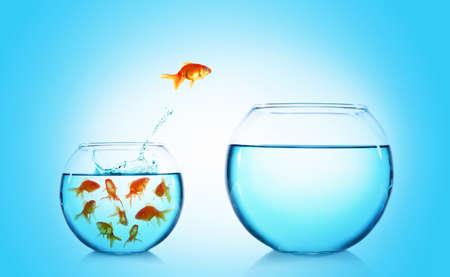 Goudvis springen uit glazen aquarium op blauwe achtergrond