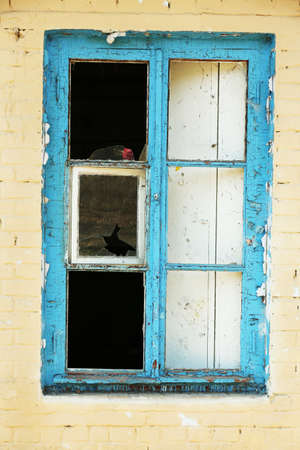vandal: Window in old abandoned house Stock Photo