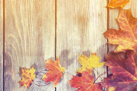 Autumn leaves on wooden background Imagens - 47947241