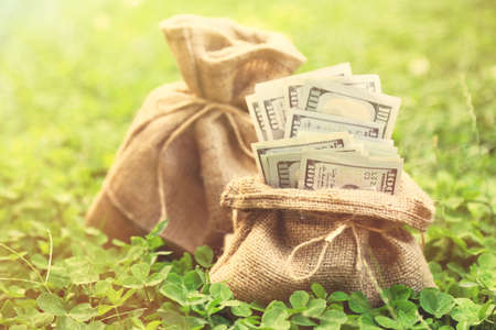 sulight: Lot of one hundred dollar bills in bag on grass background Stock Photo