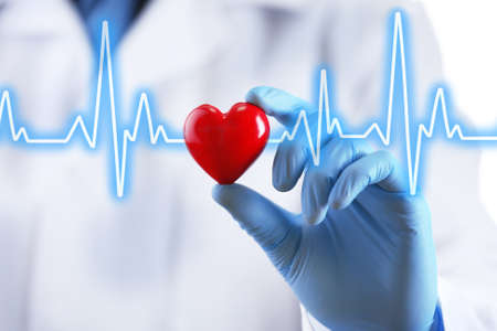 heart organ: Doctor with small heart in hand
