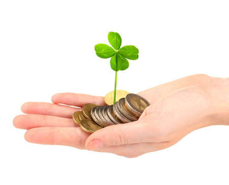 Clover leaf and euro coins in hand isolated on white
