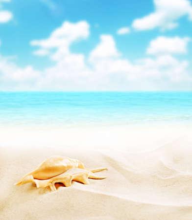 Sea beach background