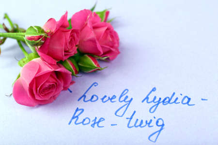 rosy: Beautiful rosy twig with inscription on paper background Stock Photo