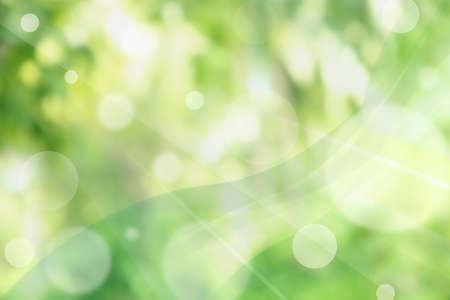 Immagini Stock Sfondo Verde Natura Astratta Con Luce Solare Image