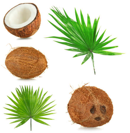 coconut palm: Fresh coconuts with palm leaves, isolated  on white Stock Photo