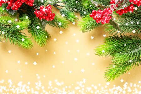 Weihnachten Tannenzweigen mit Eberesche auf dem Papier Hintergrund