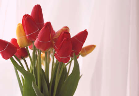windowsill: Bouquet of fresh tulips on windowsill background