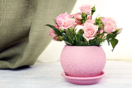 windowsill: Beautiful roses in pot on windowsill