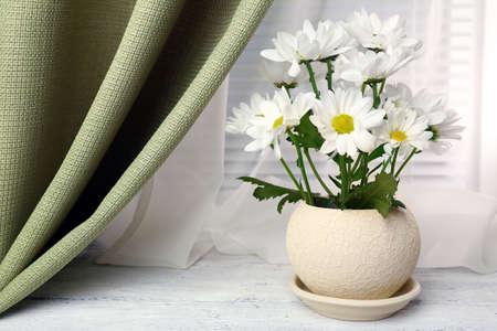 fresh pot: Beautiful chrysanthemum in pot on windowsill Stock Photo