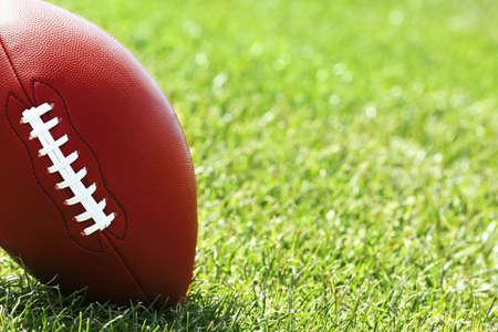 pelota rugby: pelota de rugby en el campo verde