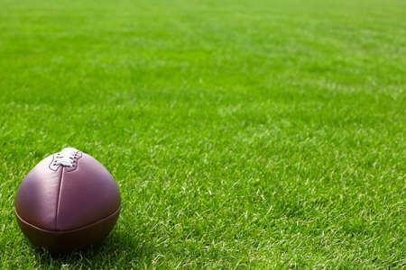 outfield: Rugby ball on green field