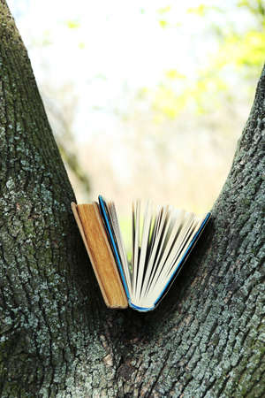 Books on tree, close-up