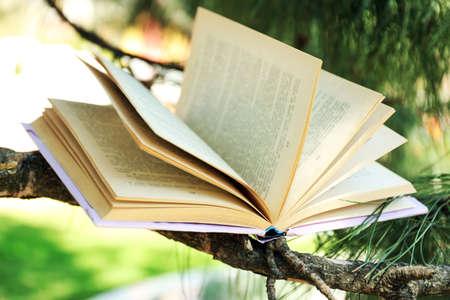 handbook: Book on tree branch, close-up