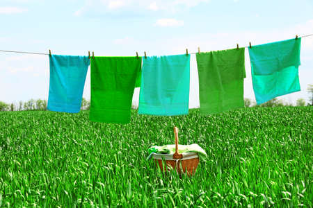 laundry line: Laundry line with towels in spring field
