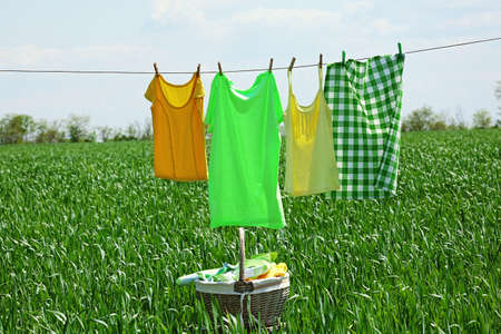 laundry concept: Laundry line with clothes in spring field