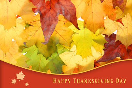 autumn colors: Autumn leaves background and text Happy Thanksgiving Day