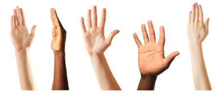 large group of people: Set of raised hands, isolated on white Stock Photo