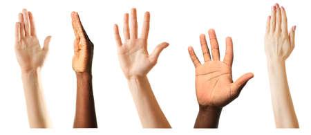large group: Set of raised hands, isolated on white Stock Photo