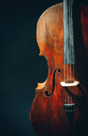 Vintage cello on dark background Фото со стока
