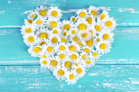 Chamomile in shape of heart on color wooden background
