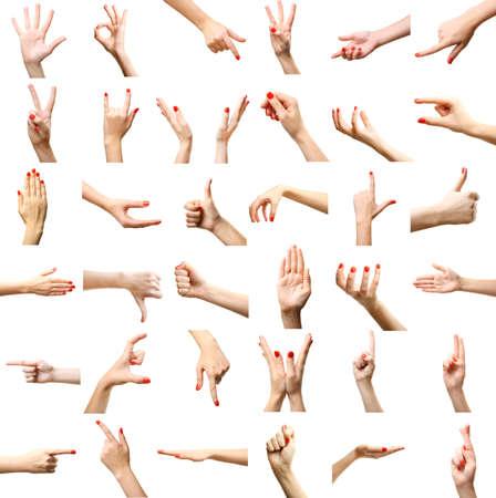 puÑos: Conjunto de gestos manos femeninas, aislado en blanco