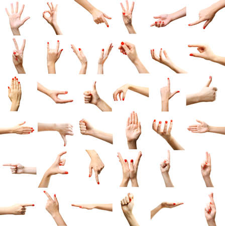 hand in hand: Set of female hands gestures, isolated on white