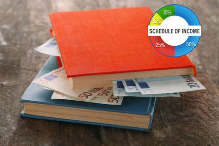 stash: Business accounting concept. Books with nested euro banknotes on wooden table. Stash of money