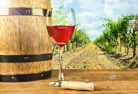bodegas: Red wine in glass and barrel on nature background Foto de archivo