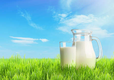 pasteurized: Milk in glassware on nature background Stock Photo