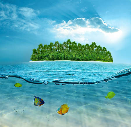 exotic fishes: Beautiful alone island in ocean and underwater world with exotic fishes Stock Photo