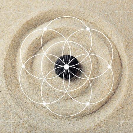 fibonacci: Illustration of spiral arrangement. Fibonacci pattern Stock Photo