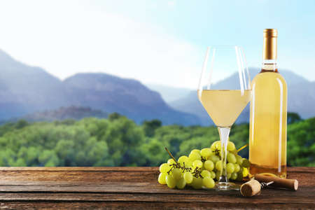 winy: Still life with white wine and bunch of grapes on nature background