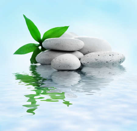 rocks water: Stack of stones and a green flower on water. Spa relaxation concept Stock Photo