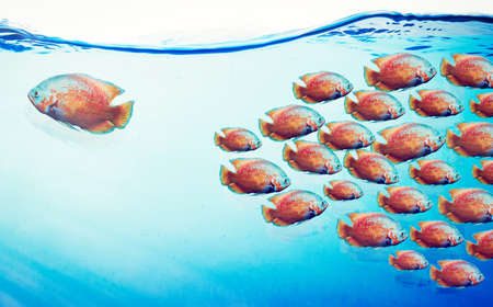 Many fishes in blue water. Against the stream concept