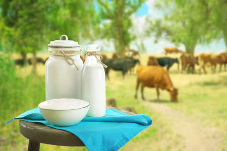 Dairy products on blurred cows in meadow background