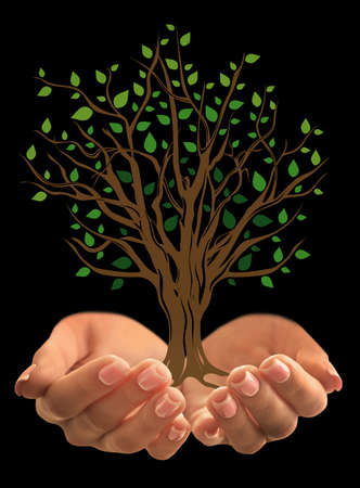 illustrated: Male hands holding illustrated tree on black background. Nature protection concept.