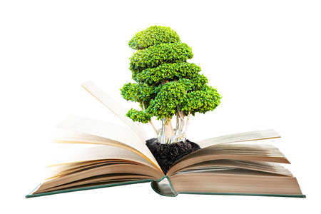 Book with green tree on white background.
