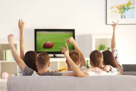 Young fans watching sports on TV