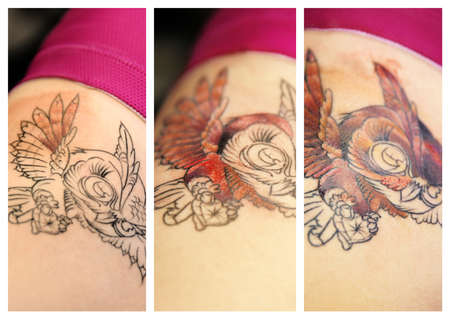 Tattoo owl on woman ribs. Collage Stock Photo