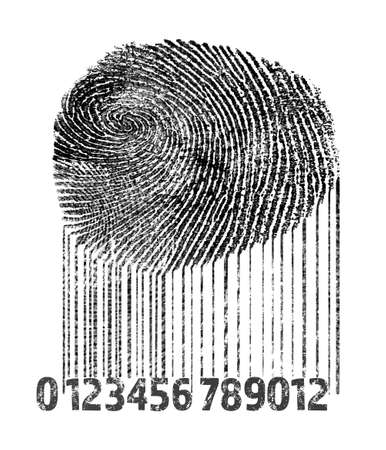 Fingerprint and bar code on white background. Individuality concept. Reklamní fotografie