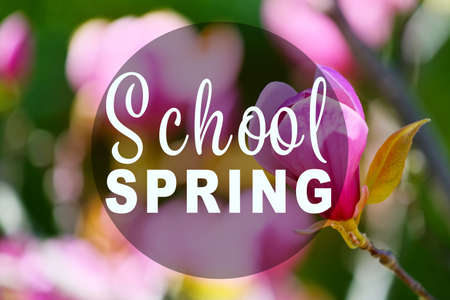 Text SCHOOL SPRING on nature background. Additional education concept Stock Photo