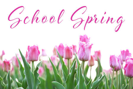 Text SCHOOL SPRING and flowers on white background. Additional education concept