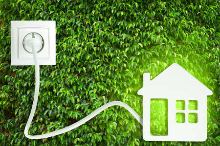 Socket with plug and home figure on green leaves background